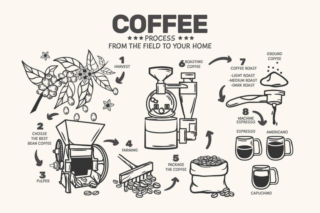 Nagy kávé szótár Lavazzával